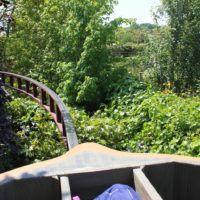 voyage en coquille de noix terra botanica